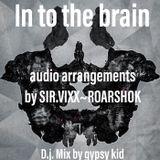 In to the brain- Audio arrangements by SIR.VIX-ROARSHOK- DJ MIX BY GYPSY KID