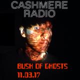Bush of Ghosts #11 with David Tinning