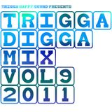 TRIGGA DIGGA MIX VOL. 9