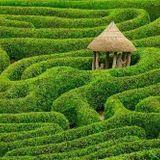 Into the Labyrinth (mouvement libre Val-David, 20/11/2015)