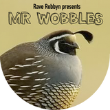 Mr Wobbles
