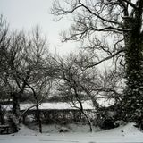 Ice Cold Winter Chill