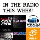 DJane PinkLady Radio Show this week #100