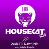 Deep House Cat Show - Dusk Till Dawn Mix - feat. Natalie Roache