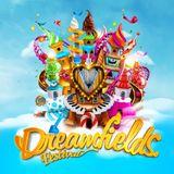 Rebourne @ Dreamfields Festival 2015