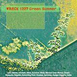 Wreck Green Summer 1227