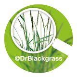 Episode 4 - Cultivating sucessful blackgrass control