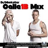 DJ Mickster - Calle 13 mix 2011