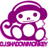 DJ.ShadowMonkey No body Listens to Techno