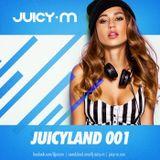 JuicyLand #081 - 2014 Yearmix vol.1
