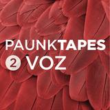 VOZ @ PAUNK podcast 02 - Agosto 2016