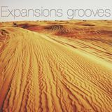 Expansions Grooves