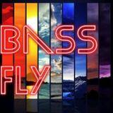 BASS FLY SECRET SOUND PODCAST JUILLET 2013