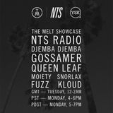 NTS 17/6/2013 w/ Special Guests The Melt (All Members) & 00Genesis