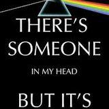 Lunatics Floyd my head