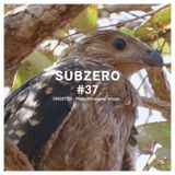 SUBZERO#37 1st hour - teropo