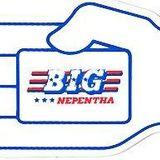 BIG NEPENTHA (TO) APERTURA - robertoliverocollection
