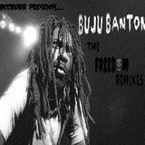 Buju Banton - Freedom Blends