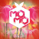 SPRING into SUMMER 2014 mix