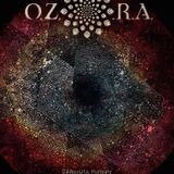 Ozora 2017 - Dome is where the heart is