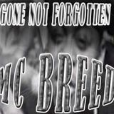 Gone Not Forgotten - MC Breed