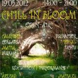 Chill In Bloom Party MX