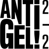 Festival Antigel - Interview - La Quotidienne