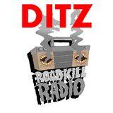 Roadkill Records Radio - Ep.2 - DITZ (July 2018)