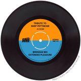 Tribute to Shep Pettibone (Brendan Mix Extended Pleasure)