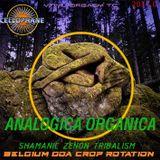 CELLOPHANE H20170 :  ANALOGICA ORGANICA  shamanic-zenon-tribalism edit