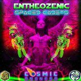 DJ COSMIC ONENESS - Visionary Shamanics Records - INDIA