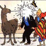 zenebou world Tintin au pays des Incas janvier 2015