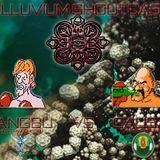 Alluvium Shoutcast 1.0