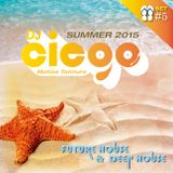 Summer 2015 - Set #5 by Ciego Dj (Matias Tannure)