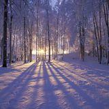 Deep Winter Mix