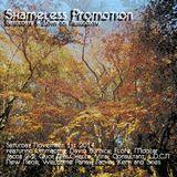 Shameless Promotion Radio Show 01-11-14
