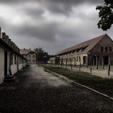 Día Internacional de Conmemoración de Víctimas del Holocausto