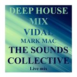 DEEP HOUSE LIVE MIX FOR VIDAL MARK MAC FOR THE THE SOUNDS COLLECTIVE.
