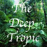 The Deep Tropic