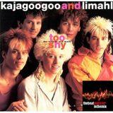 Kajagoogoo-Kaja -Limahl Megamix - Too Shy