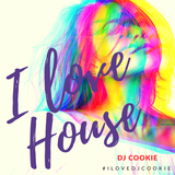 I LOVE HOUSE Vol. 19