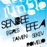 Deep Jungle 28/04/2013 - Efea