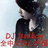DJ Badboy 2016 v2:全中文伤心快摇BPM190/196