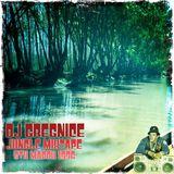 Dj GregNice - Jungle Mix 5th March 1996