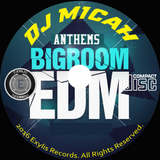 DJ Micah & project Stealth present...  BIG ROOM Anthems