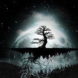 A New Beginning - #003 - Dark Tree
