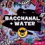 DJ Craig Case Soca 2018 Bacchanal & Water