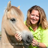 8 november 2018: Horsebuddy Delftgauw - Bianca van der Voort