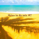 #skizo in the mix