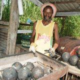 Breadfruit Sessions Vol. 4 - Corey Dawkins
